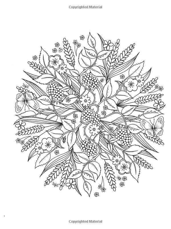 Amazon.com: Creative Haven Wondrous Nature Mandalas: A