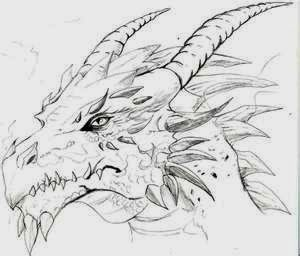 drawing dragons - Google Search -   21 dragon tattoo sketch