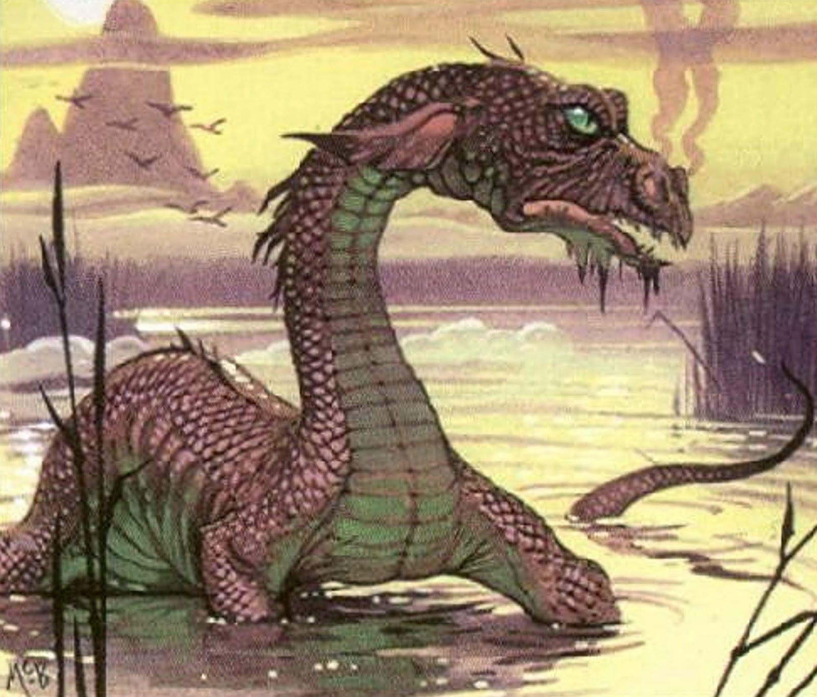 ShukerNature: THE DRAGONS OF OCEANIA | Dragons | Mythical