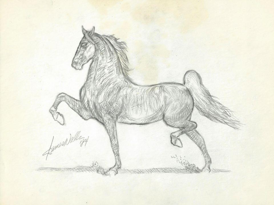 Картинки лошадей карандашом молния