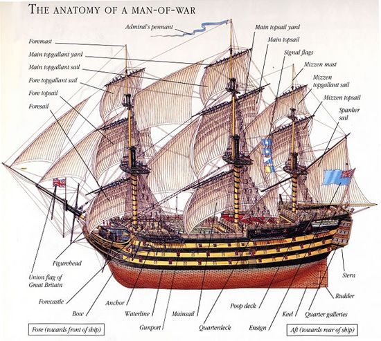 Parts Of A Pirate Ship Diagram Heart Anterior Aspect C5 Schwabenschamanen De The Anatomy An 18th C Man War Including Cross Sections Rh Pinterest Com