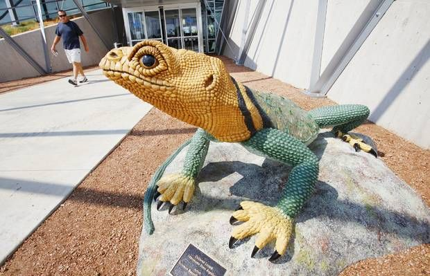 The sculpture Collared Lizard by Solomon Bassoff was unveiled this week at the entrance of the Patience S. Latting Northwest Library in Oklahoma City. Hand sculpted concrete. Photos by Paul B. Southerland, The Oklahoman