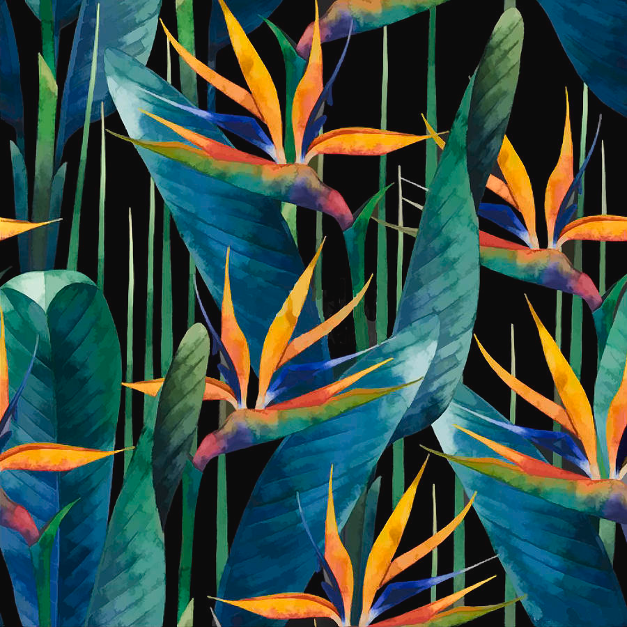 Watercolor Painting Tropical Bird Of Paradise Plants by Elaine Plesser -   18 tropical plants Watercolor ideas