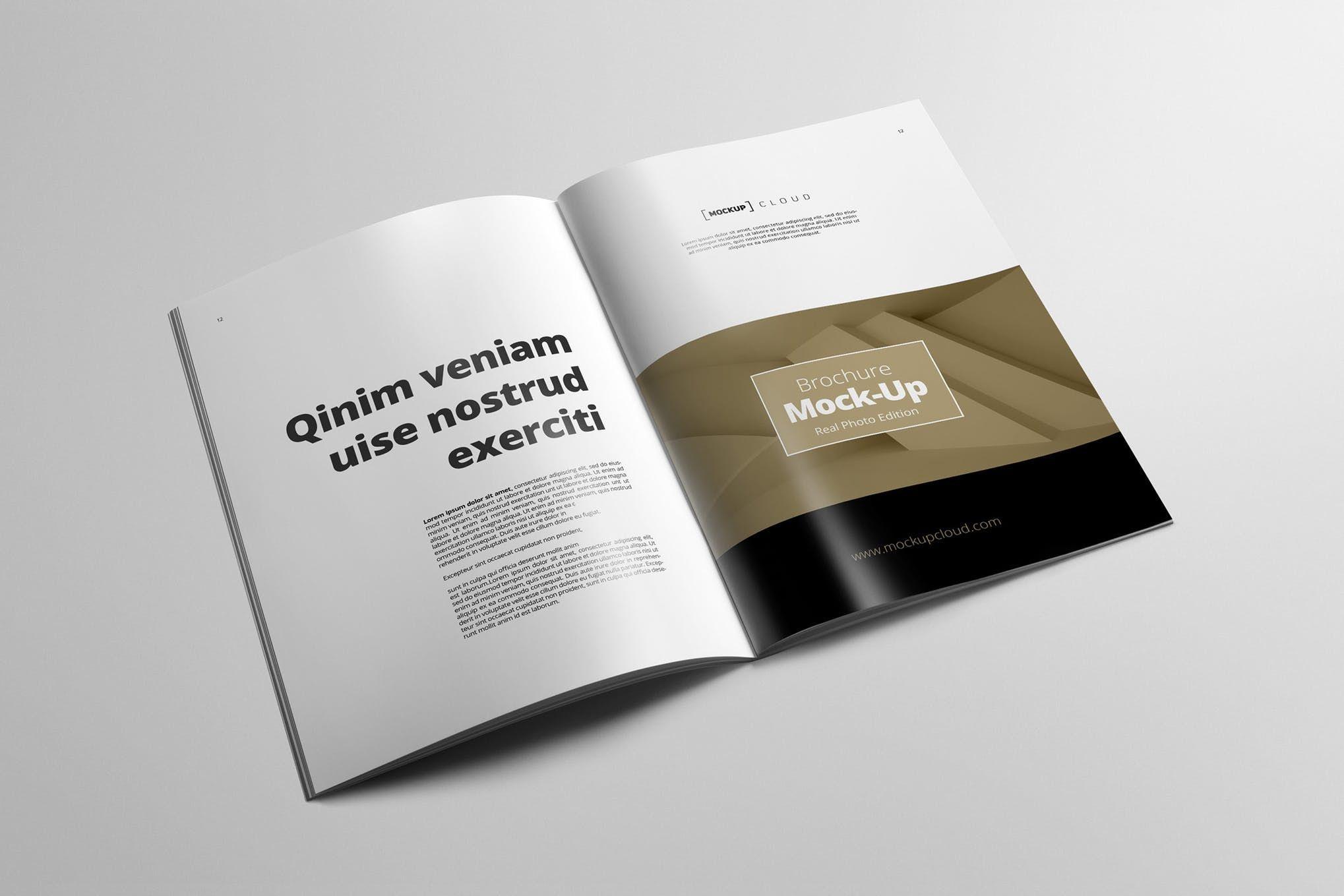 Portrait Brochure Mockup pany Brochure Design Corporate Brochure Design Brochure Mockup Tri Fold