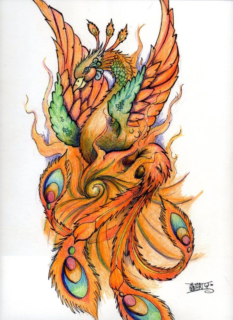Colorful phoenix tattoo designs - Phoenix Tattoo Design