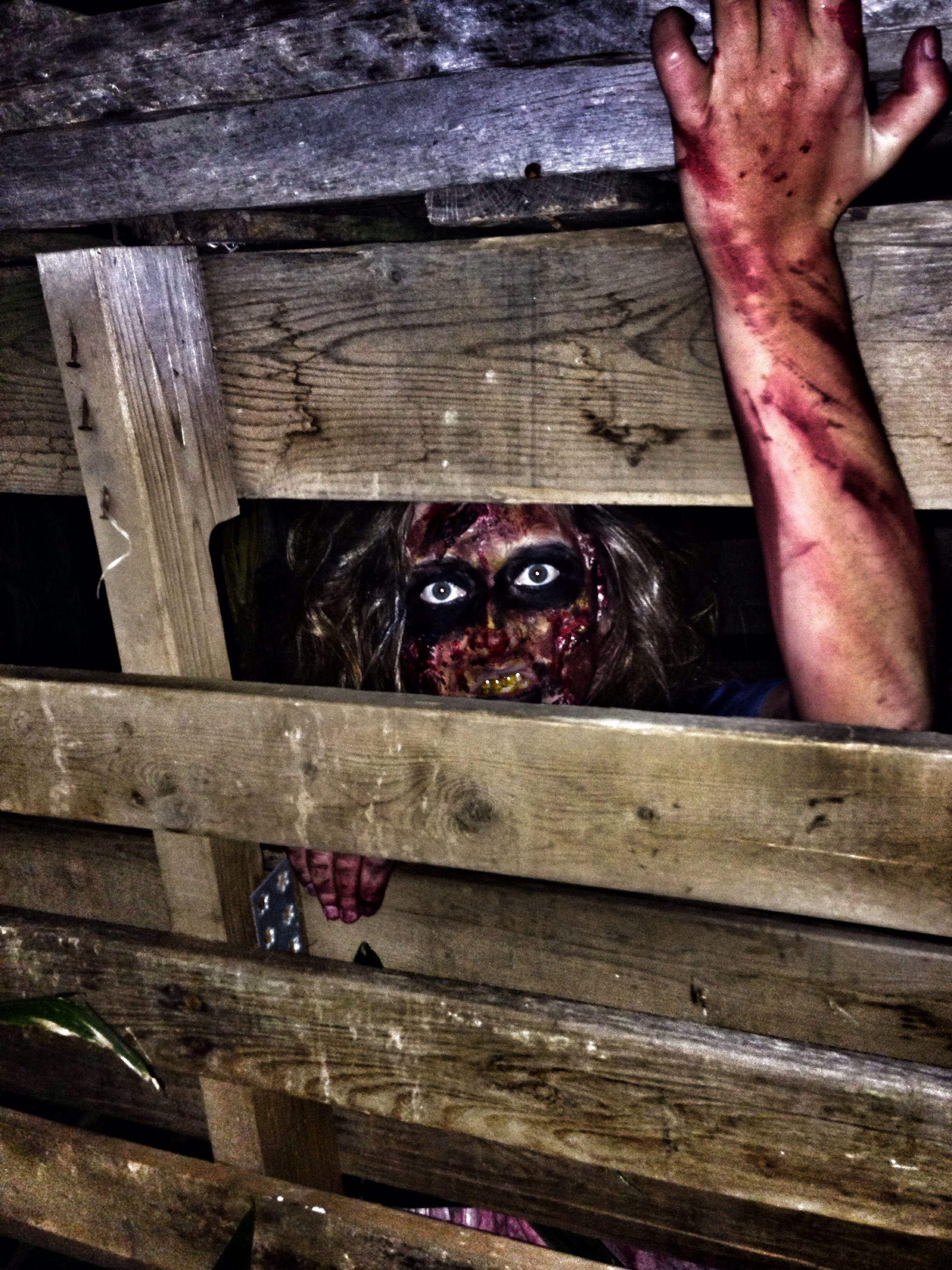 Mayfields haunted trail in athens tn haunt scary trail me for Haunted woods ideas