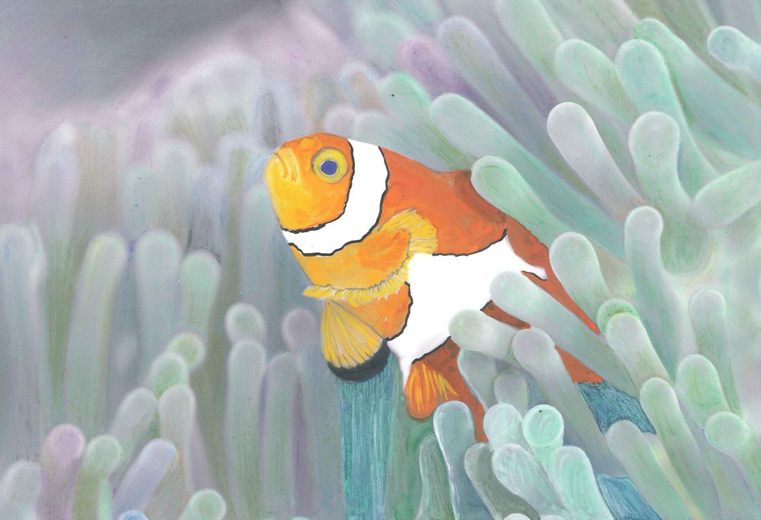 Beautiful Creatures Adult Coloring Book: clownfish coloring examples ...