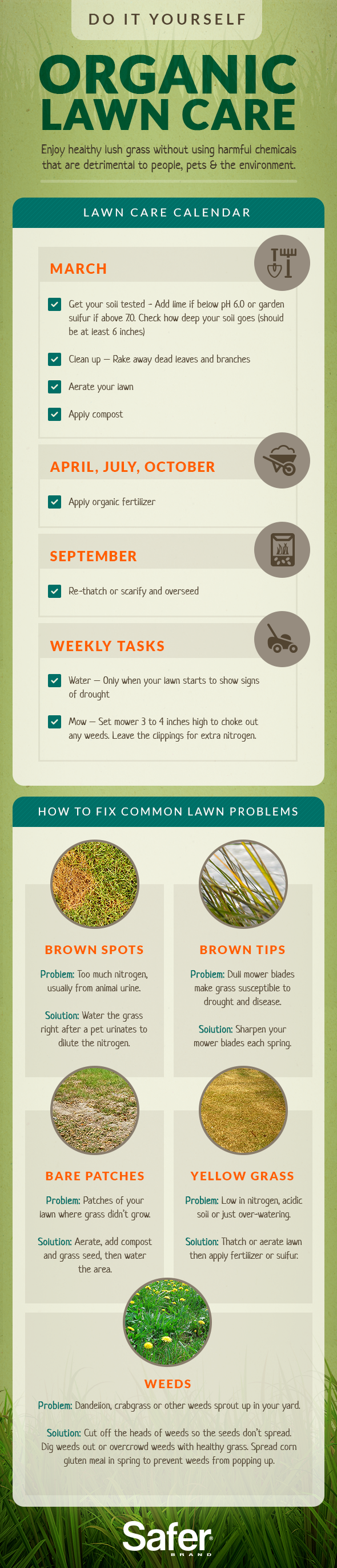 17 Best ideas about Lawn Care Schedule on Pinterest | Lawn care ...