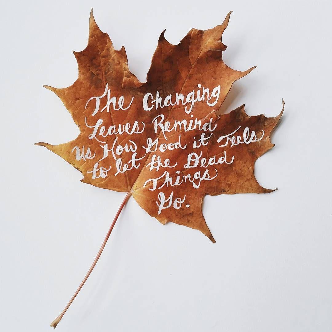 Картинки слова листья