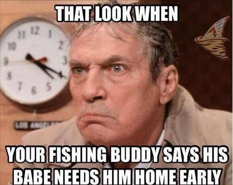 Funny Memes For Weekend : Fishing meme every weekend! fishing memes pinterest fishing