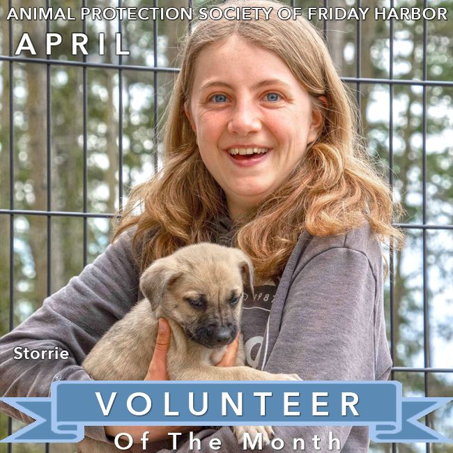 APSFH VOLUNTEER OF THE MONTH APRIL 2019 We are pleased to