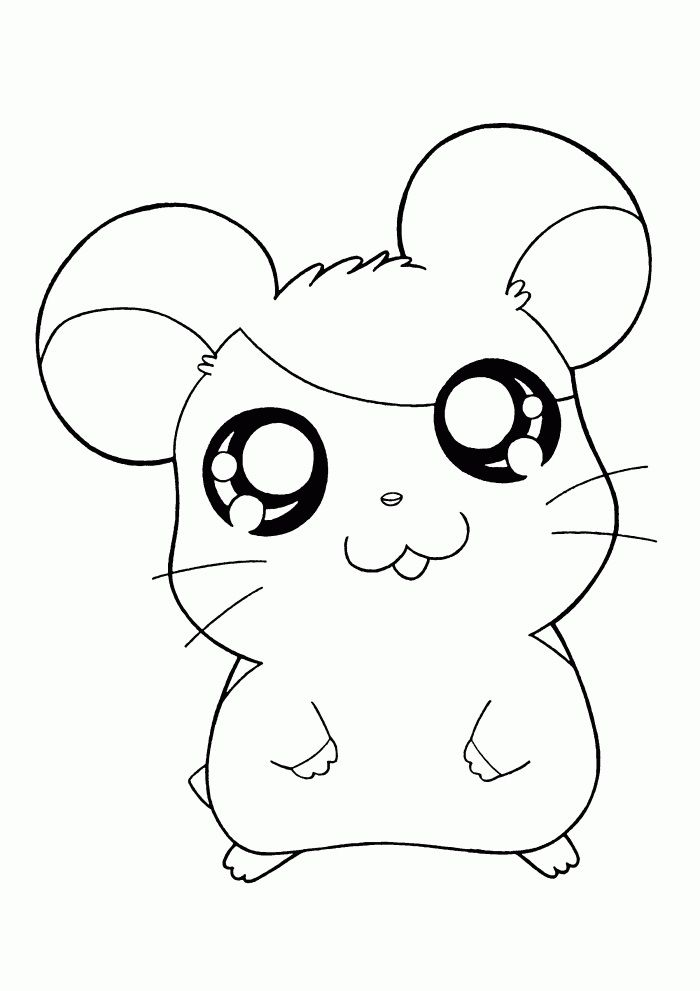 Hamtaro Coloring Page Cute Coloring Pages Pokemon Coloring
