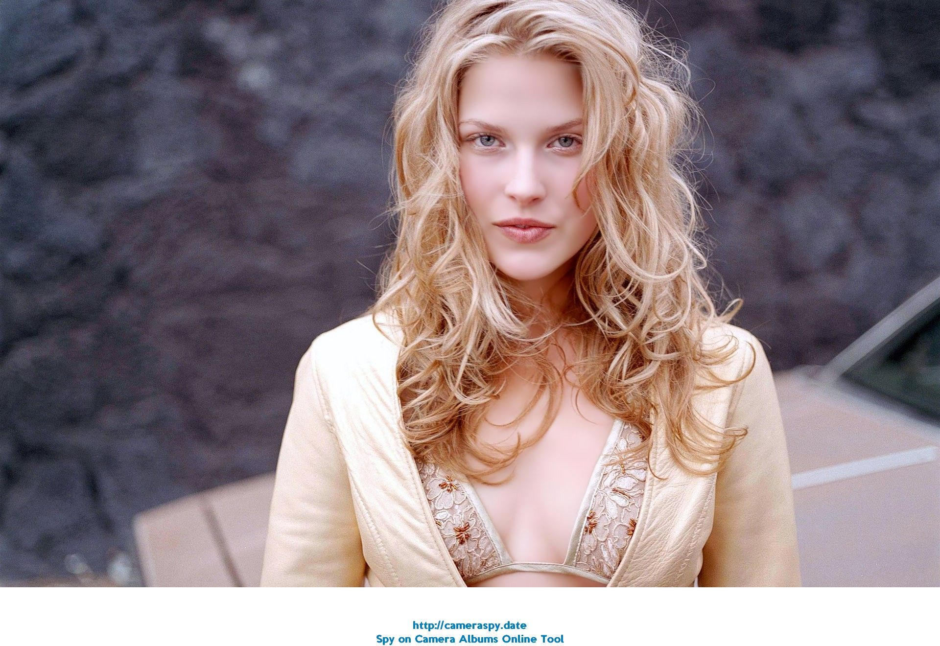 Hacked Ali Larter nude (63 photo), Tits, Hot, Boobs, lingerie 2015