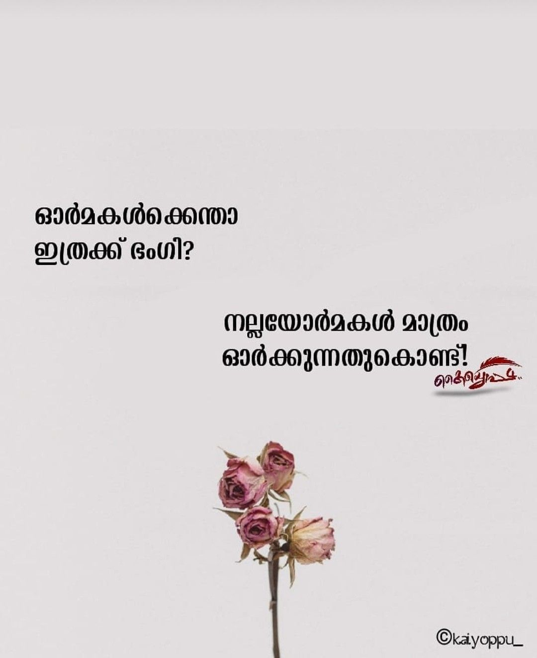Pin By Midhun Comrade On Mazha Feelings Quotes Malayalam Quotes Book Qoutes