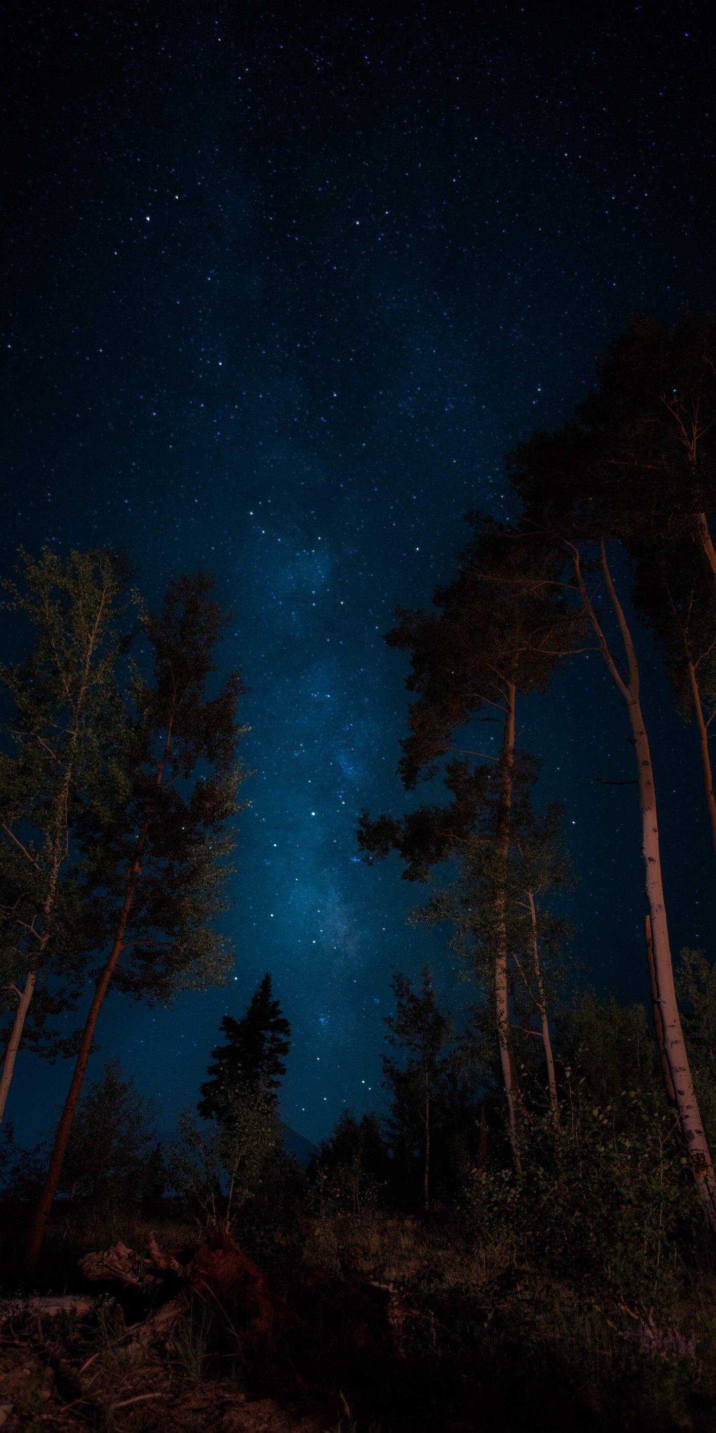 Pin By Iyan Sofyan On Sfe Universe Pictures Iphone Wallpaper Sky Night Sky Wallpaper Dark Wallpaper
