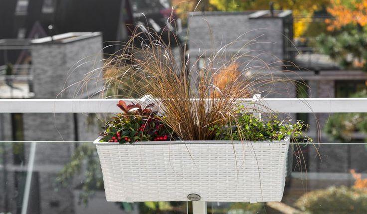 Rattan Blumenkübel die rattan blumentöpfe pescara sind in den farben braun weiß und