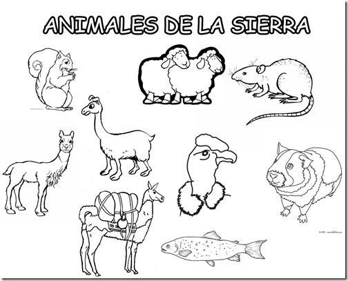 Resultado De Imagen Para Imagenes De Animales De La Region Costa Para Colorear Free Math Printables Preschool Counting Math Printables