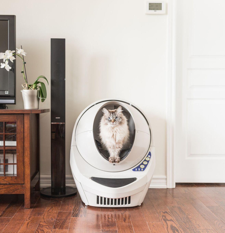 The LitterRobot™ Smart Automatic SelfCleaning Litter