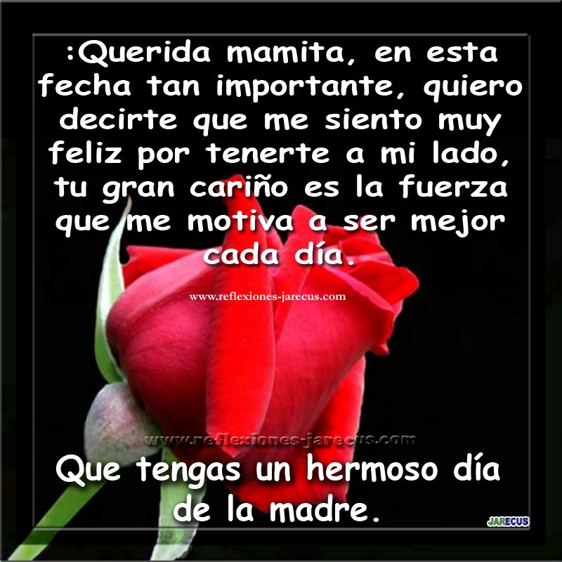 Feliz Día De La Madre Feliz Día De La Madre Feliz Dia Del Cariño Dia De Las Madres