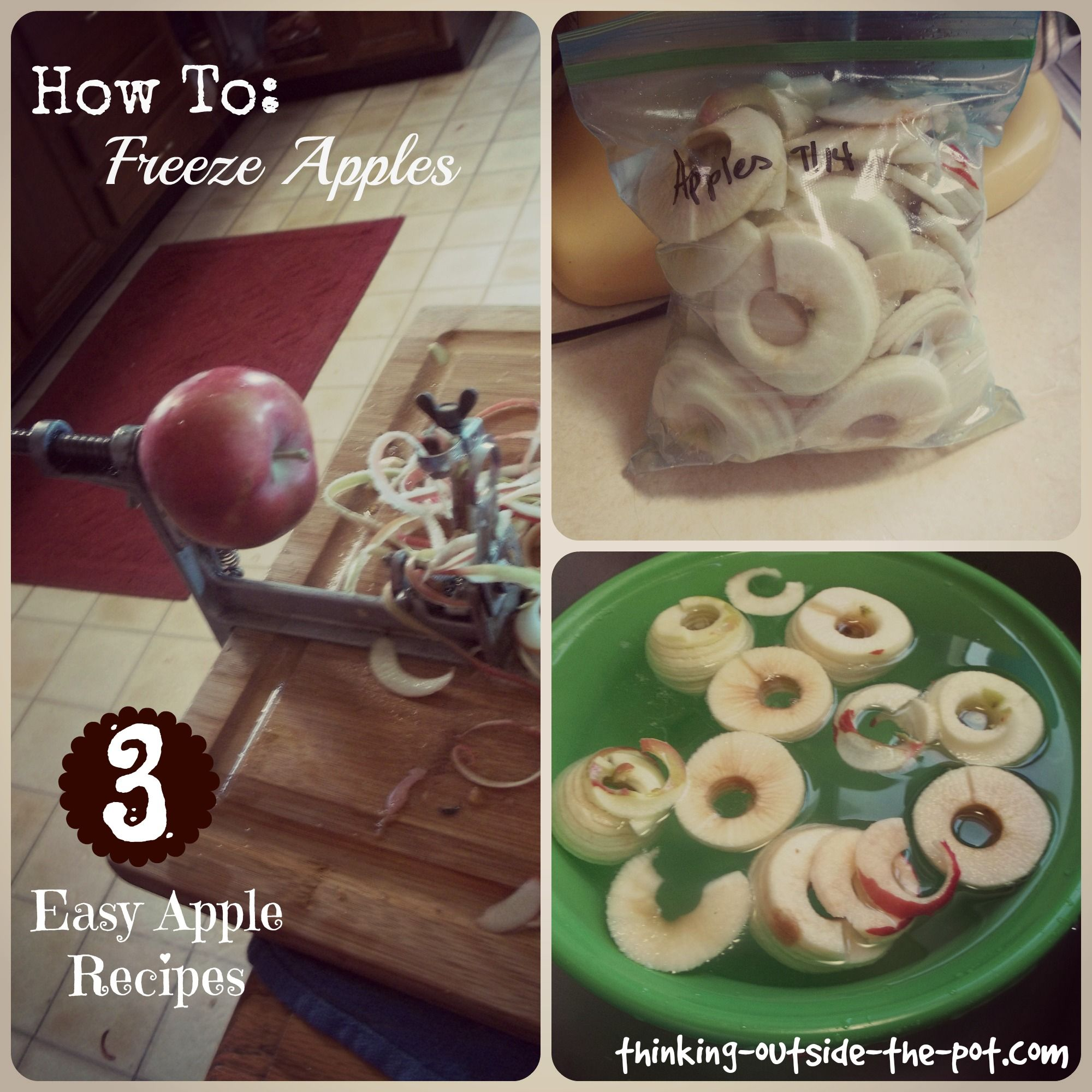 ideas about how to freeze apples on pinterest freezing apples recipe for apple cake and freeze - Can You Freeze Pears