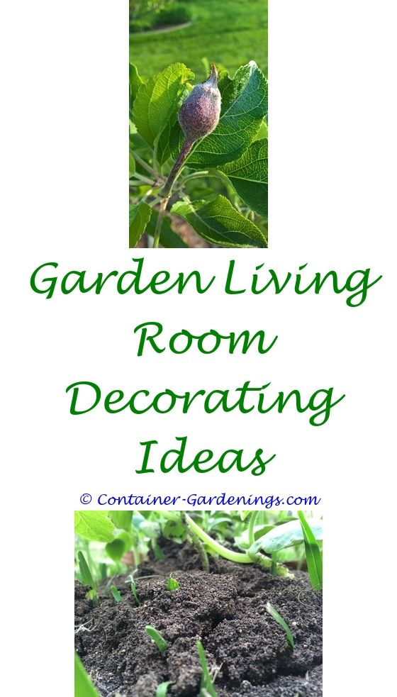 New Gardening Magazine | Garden Ideas, Small Gardens And Container Gardening