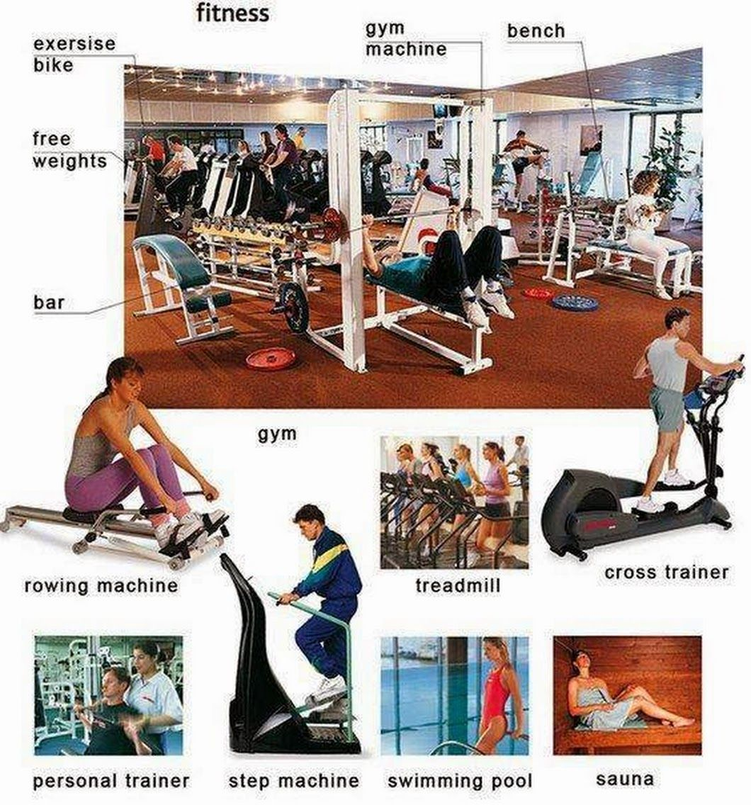 Some Gym vocabulary:    English Language, ESL, EFL, Learn English ...