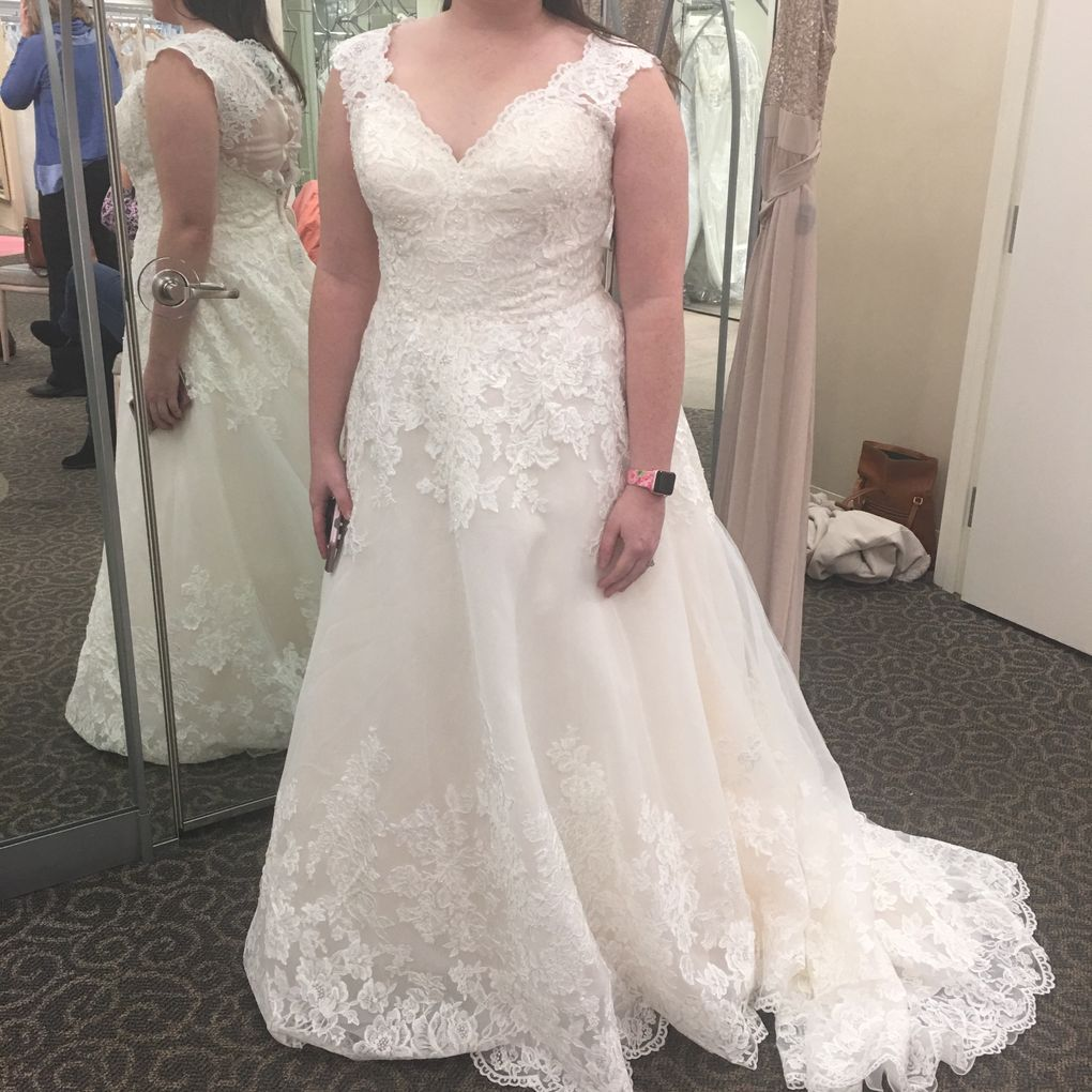 Scalloped Lace And Tulle Plus Size Wedding Dress David S Bridal Wedding Dresses Davids Bridal Wedding Dresses Ball Gowns Wedding [ 1020 x 1020 Pixel ]