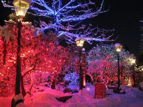 Winter wonderland posh christmas lights snow and