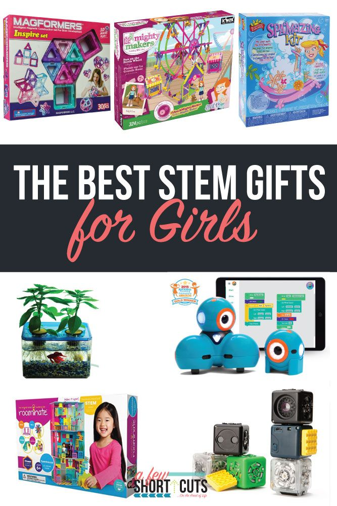 The Best Stem Gifts For Boys   Stem gift, Gifts for boys ...