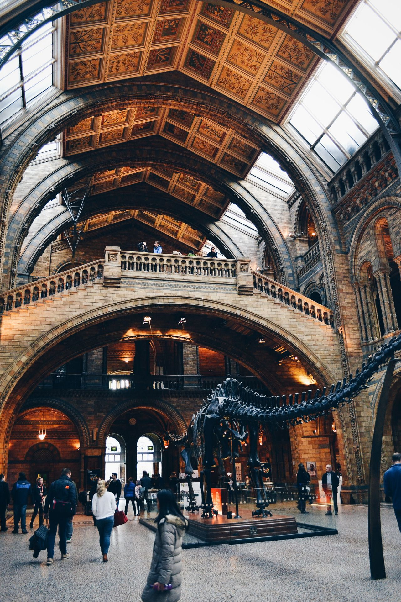 D Exhibition In London : The best history museum ideas on pinterest natural