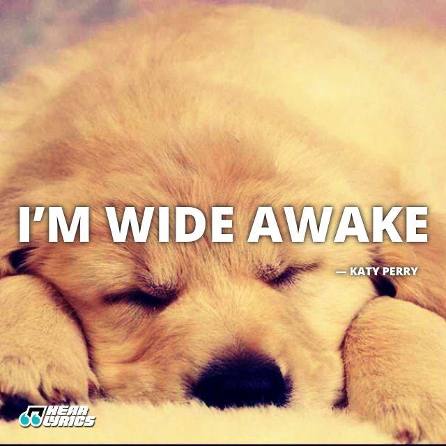 Cute Baby Sleeping Quotes: Hear Lyrics - Animals