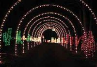 the christmas light up celebration in clinton pa is the perfect event for the entire family the celebration includes more than a mile of lights and - Clinton Pa Christmas Lights