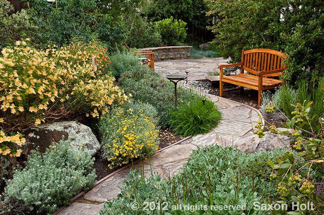 Design tips for photogenic gardens california native for California native landscape design