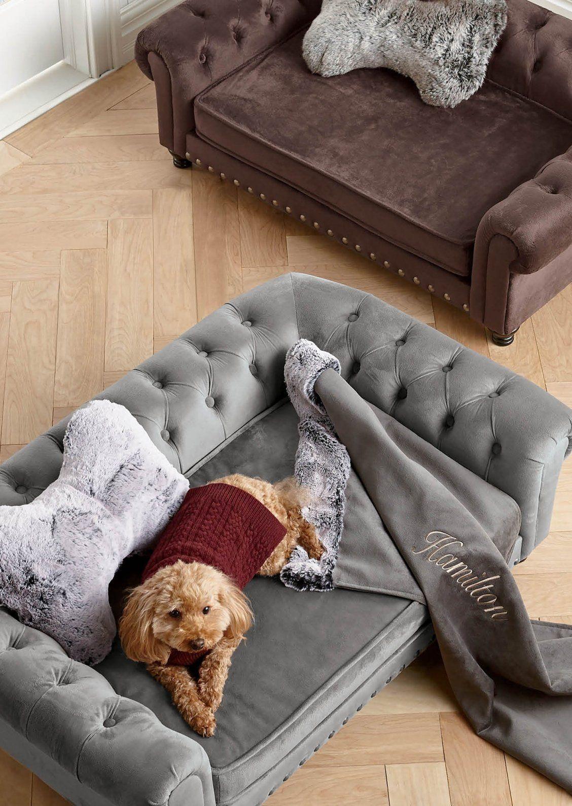 Wentworth Tufted Dog Sofa Dog sofa, Tufted dog bed