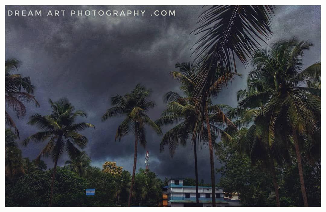 The Photo Taken By Yesterdays Rain Thiruvegappura India Kerala