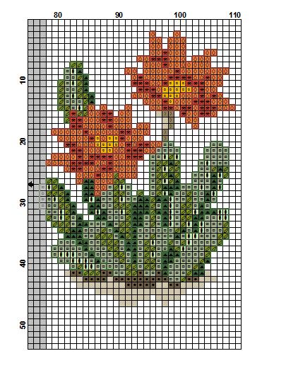 kaktusy 2