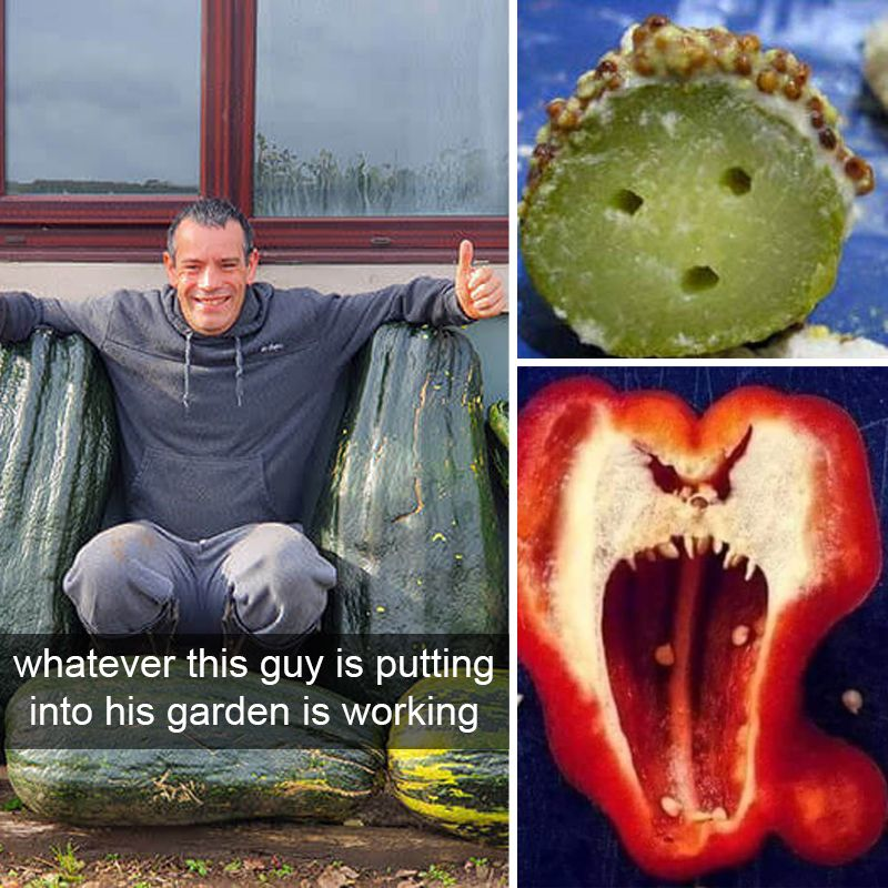 40+ People Shared Weird Food Anomalies They Found