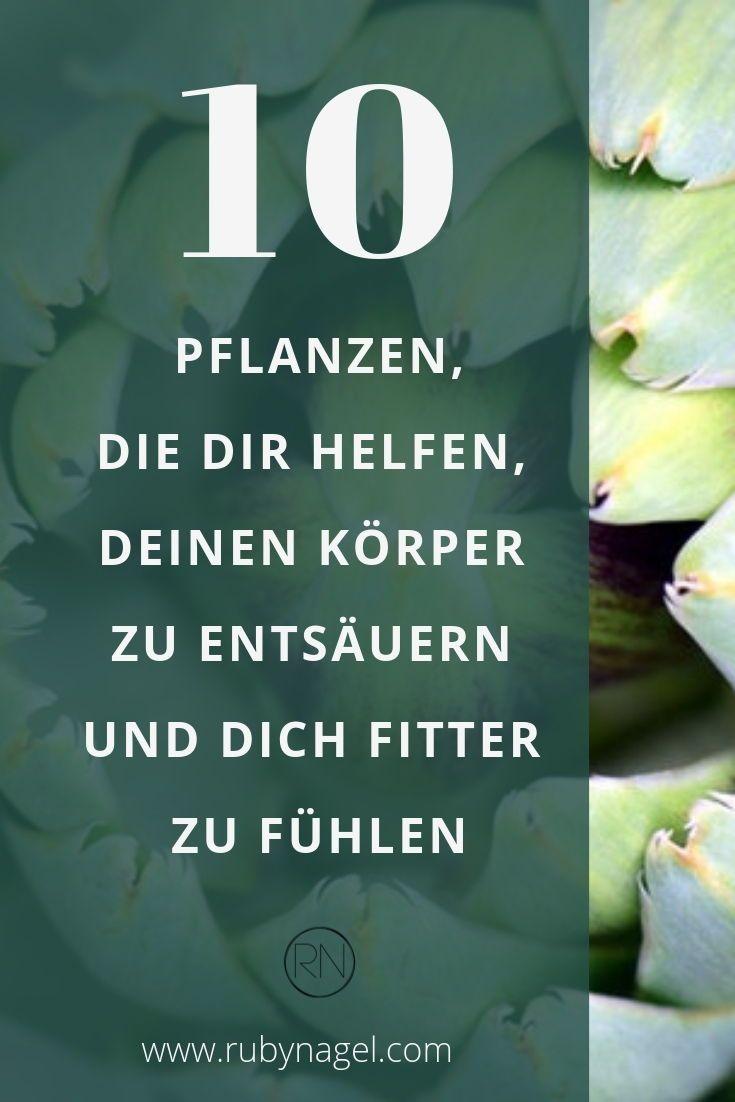 Den Körper entgiften: Die 10 besten Heilpflanzen bei Übersäuerung