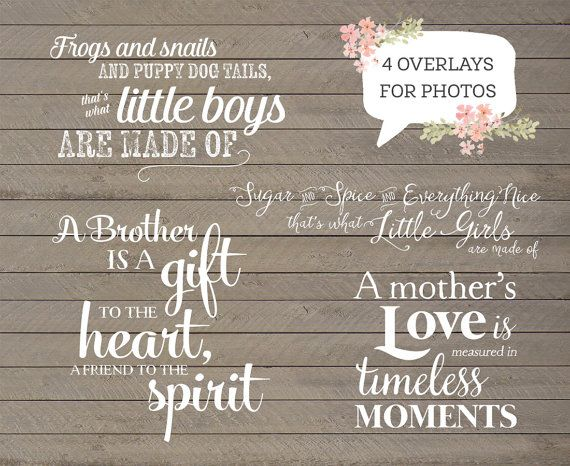 4 Word Quotes Delectable 48 Word Overlays Family Child Phrases Photo Overlay Text Photo