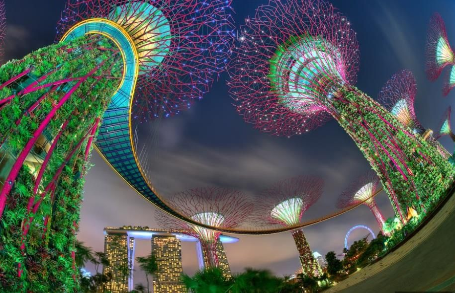 gardens by the bay singapore every evening for fifteen minutes the trees are lit - Garden By The Bay Music