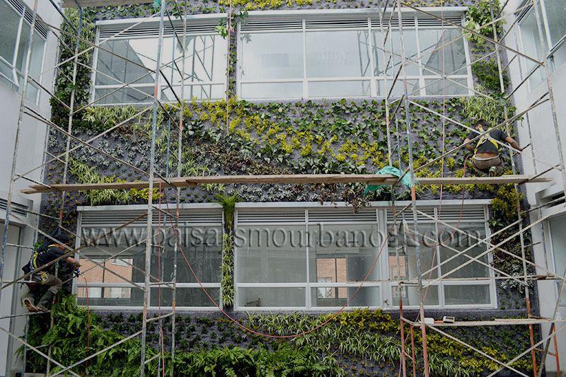 Jard n vertical del centro m dico compensar en bogot for Centro medico ciudad jardin