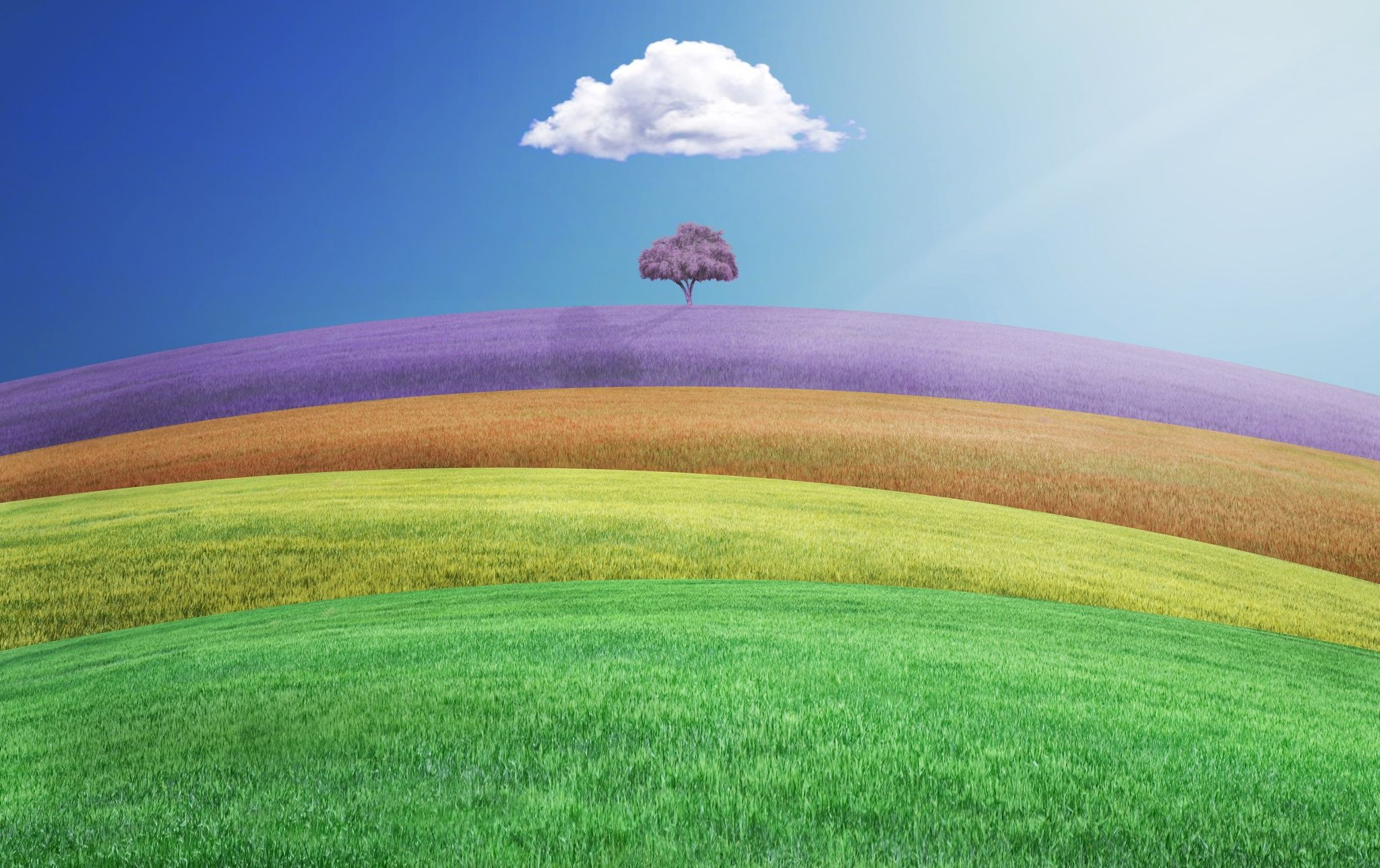 colorful land by Hossein Zare on 500px