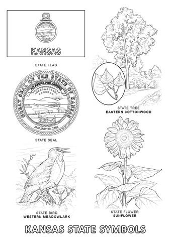 Kansas State Symbols Coloring Page From Kansas Category Select From 24659 Printable Crafts Of Cartoons Nature Animal State Symbols Coloring Pages Kansas Day