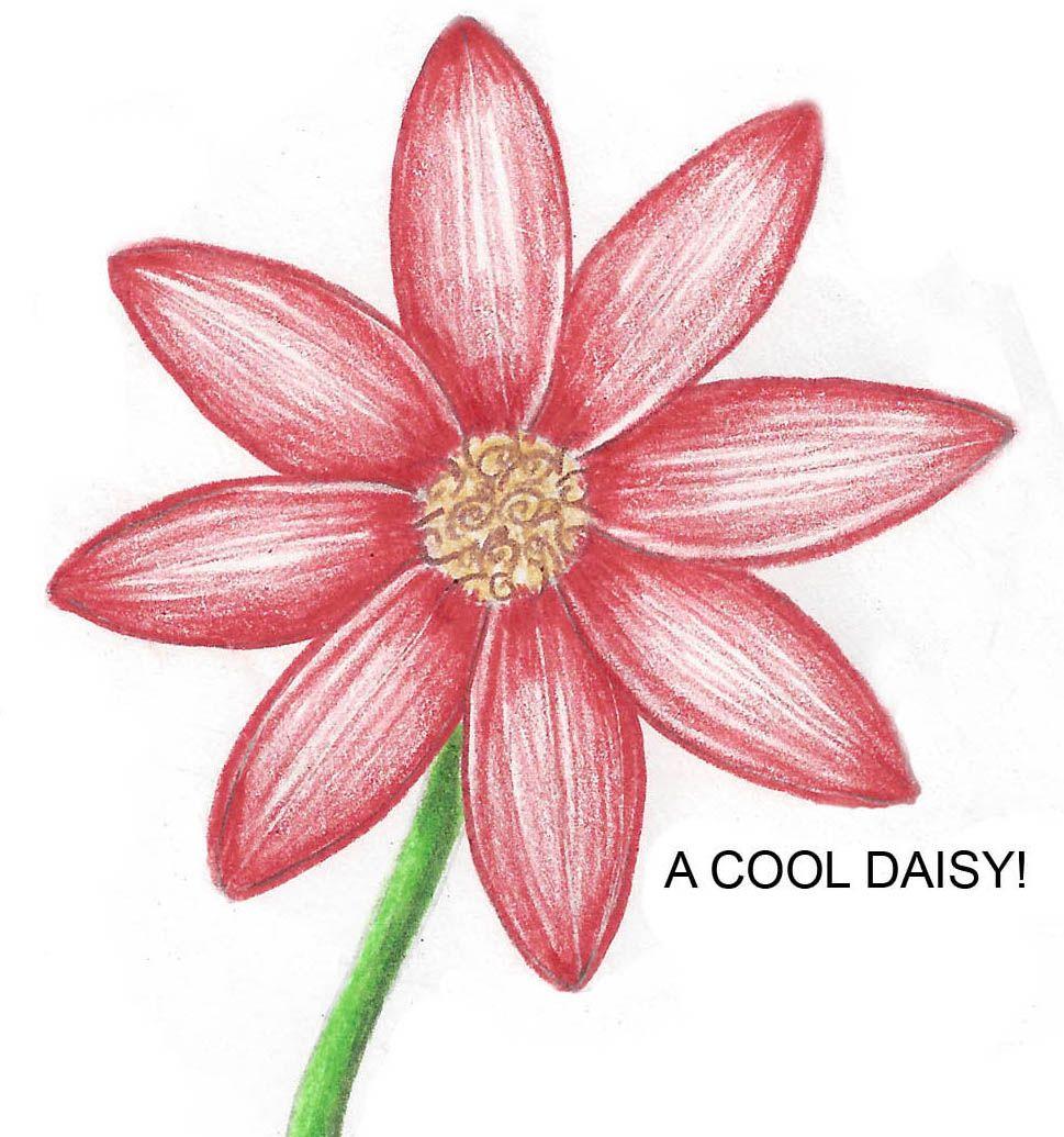 How 2 Draw Stuff Flower Drawing Tutorials Easy Flower Drawings Flower Drawing