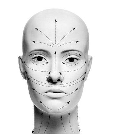 le linee del massaggio Langer sul viso