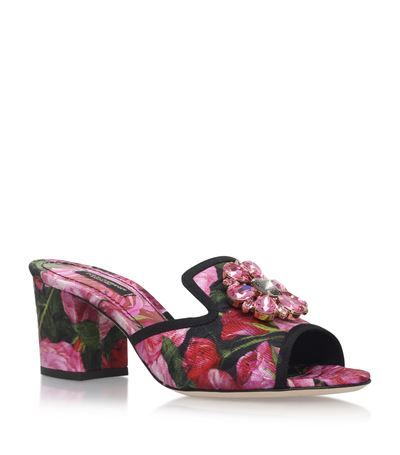 Jewel Sandals BIANCA Leather Spring/summer Dolce & Gabbana Clearance Online qVcdl