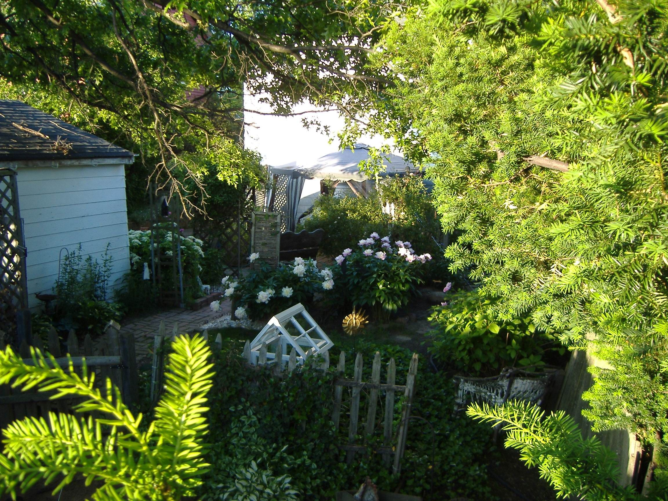 small backyard (With images)   Small backyard, Backyard ...