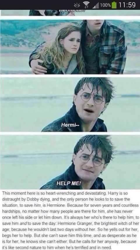 Glad I Have Friendships Like Harry And Hermione Harry Potter