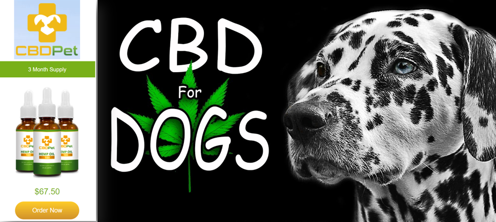Have You Seen CBDPURE's CBD Oil for Dogs & Cats Oils for