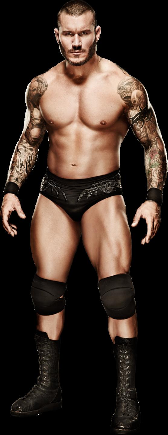 Randy Orton 2017 Stats Png By Https Darkvoidpictures Deviantart Com On Deviantart Randy Orton Wwe Superstars Orton